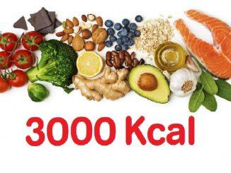 DIETA 3000 CALORIAS