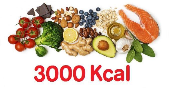 Que es la dieta hipercalorica pdf