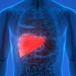 Dieta para Limpiar el Hígado ¡Vive más años!